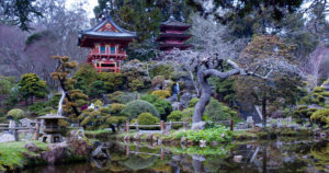 Japanese Garden in San Francisco