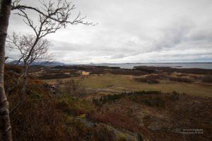 Foto aus der Höhe auf eine landwirtschaftlich geprägte Küste