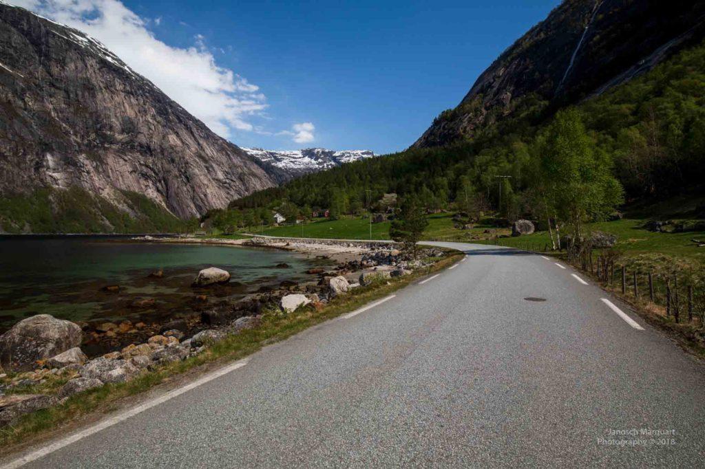 Foto einer Strasse entlang des Eidfjords im Frühling
