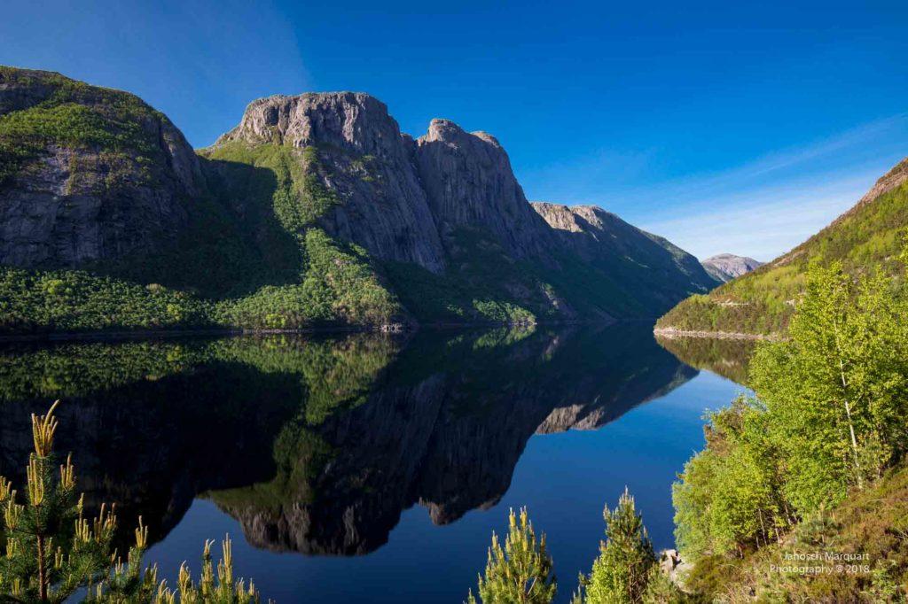 Foto eines bewachsenen Berges mit Spiegelung im Fjord.