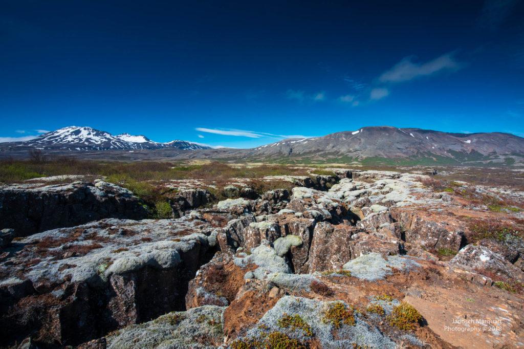 Foto von Felsspalten im Pingvellir Nationalpark die mit Moos bewachsen sind.