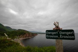 Der Balznerbock sitzt auf einem Gefahrenschild. Im Hintergrund der Cabot Trail.