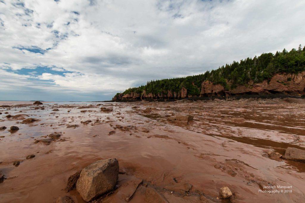 Foto des Meeresboden bei den Hopewell Rocks.