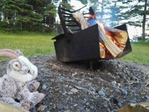 Balznerbock sitzt beim Lagerfeuer und schaut zu