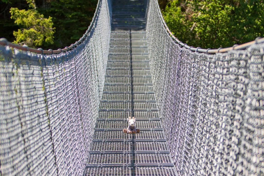 Balznerbock auf der Hängebrücke