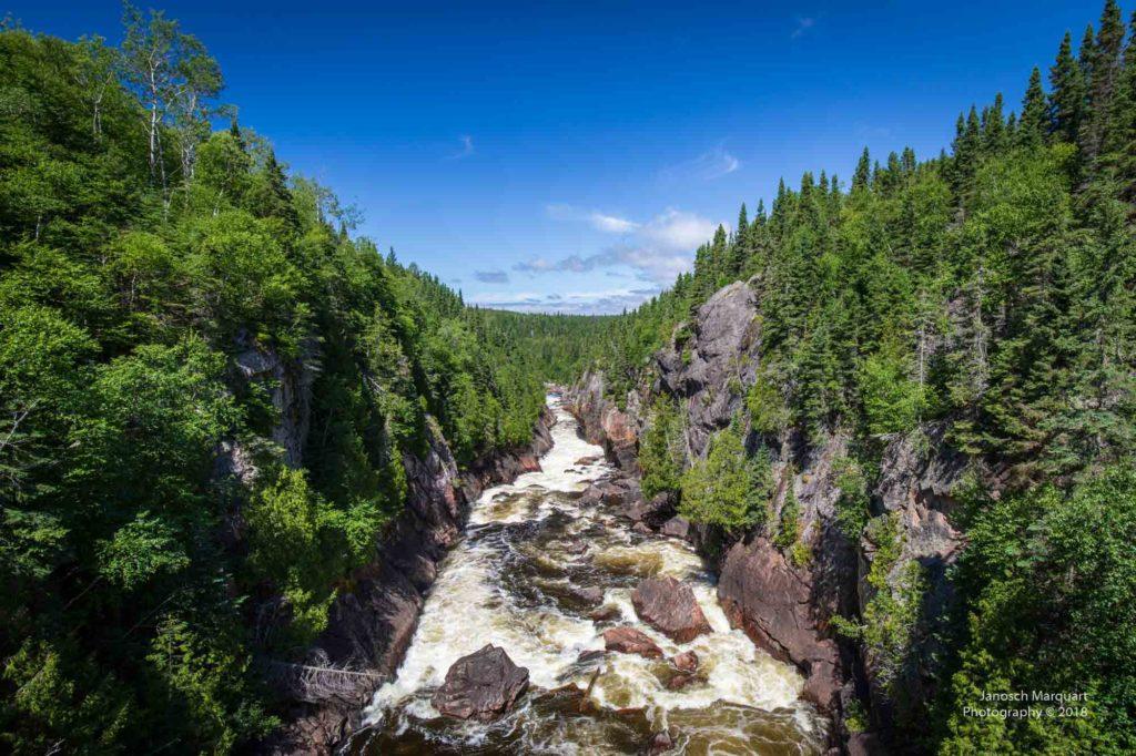 Foto tossender Wassermassen im Wald.