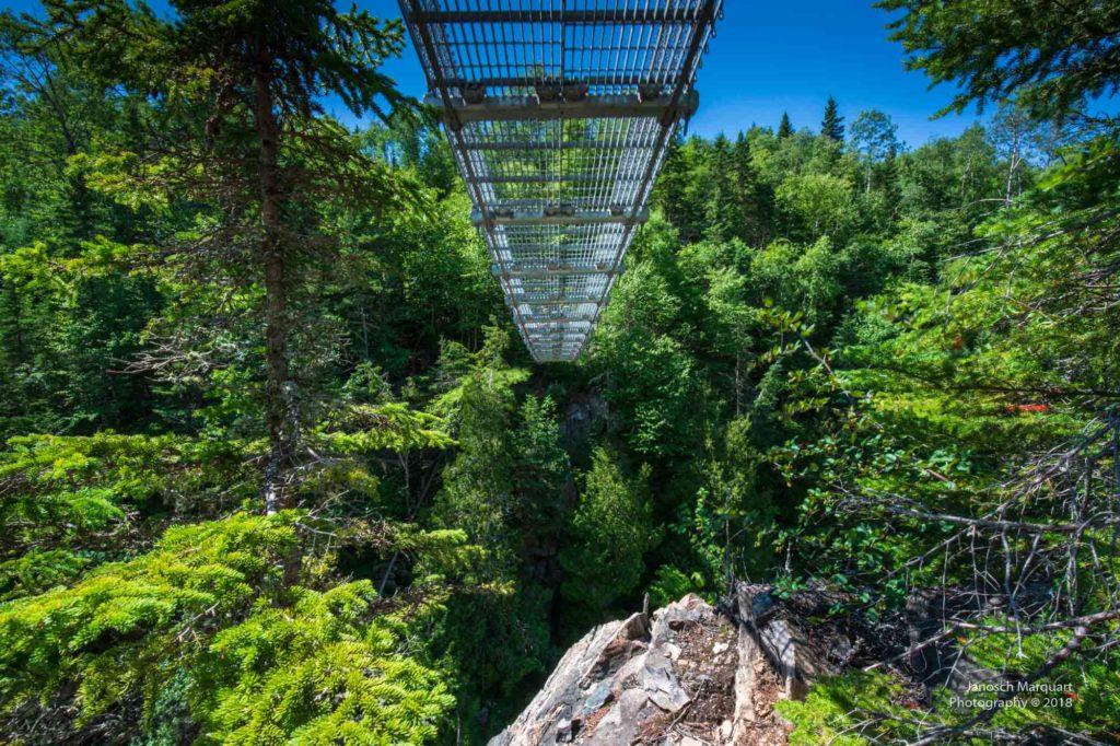 Foto einer Hängebrücke im Wald von unten.
