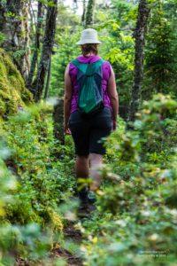 Foto von Christina beim Wandern im grünen Wald.