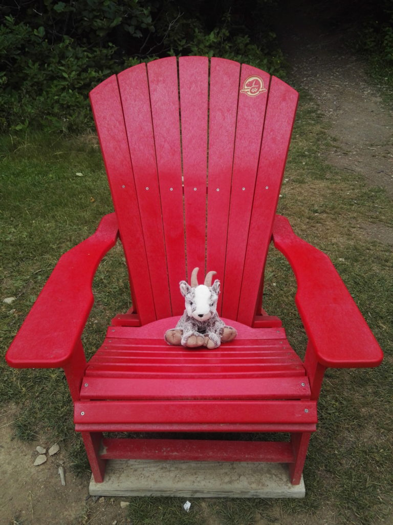 Balznerbock sitzt auf dem roten Stuhl und macht eine Pause.