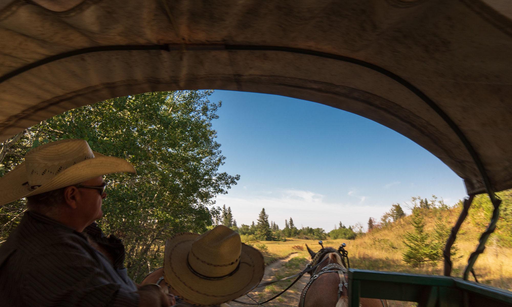 Planwagen mit Kutscher in der Prärie