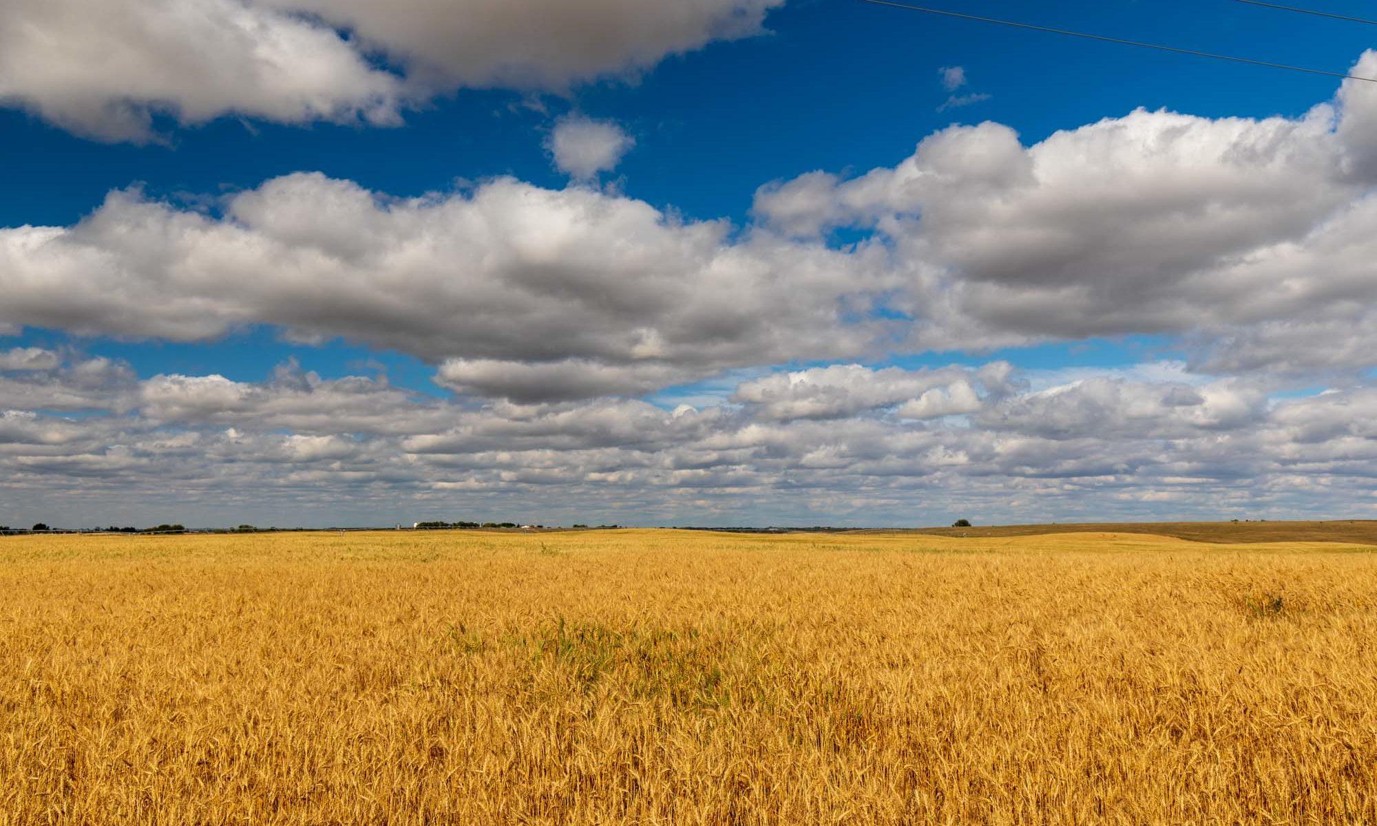 Farmland unter weitem Wolkenhimmel in Saskatchewan