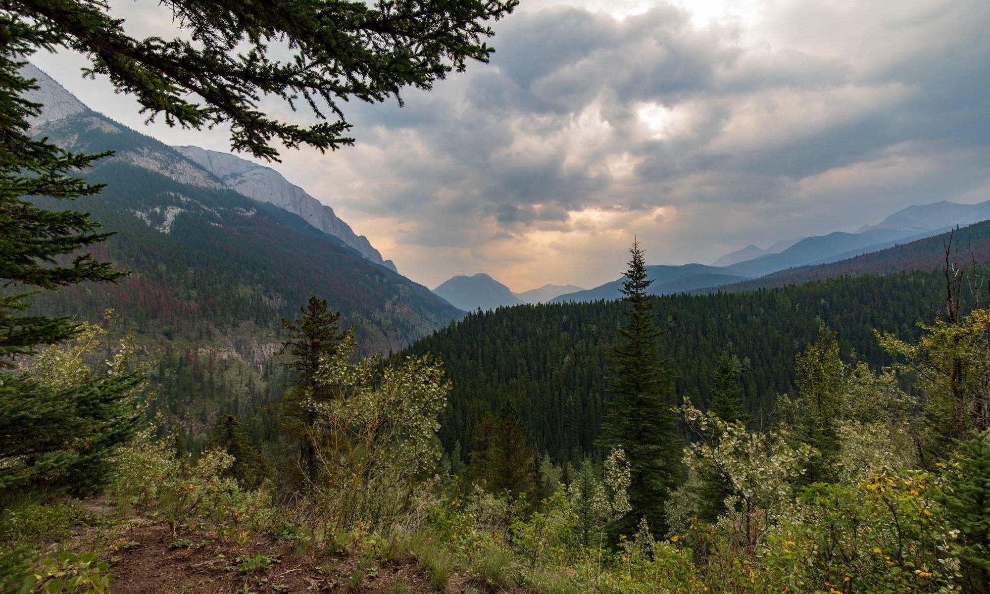 Miette Hotsprings - Tal im Jasper Nationalpark in den Rockie Mountains