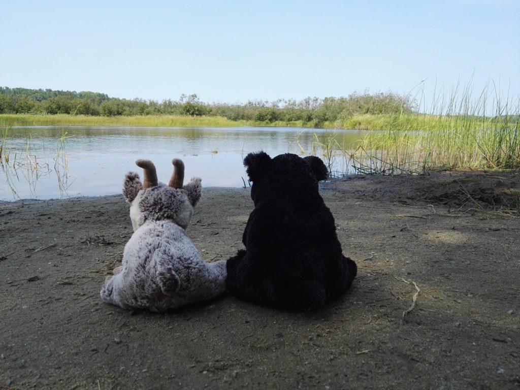 Balznerbock und Bär sitzen zusammen am See