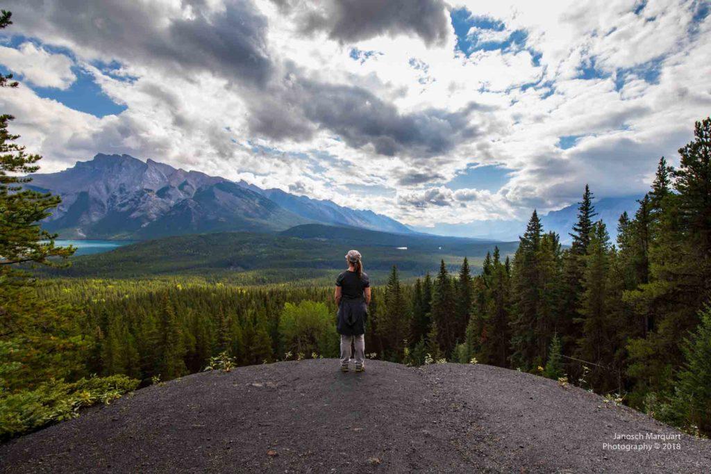 Aussicht über die Wälder von Banff.