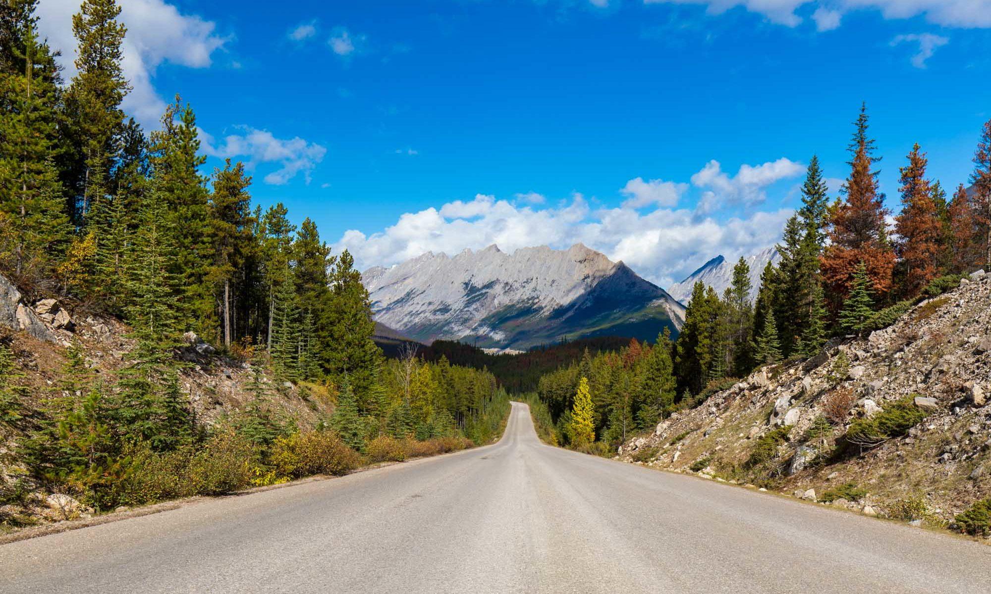 Strasse im herbstlichen Jasper Nationalpark