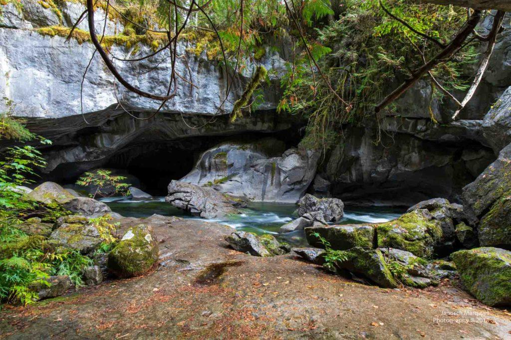 Höhleneingang im kanadischen Regenwald.