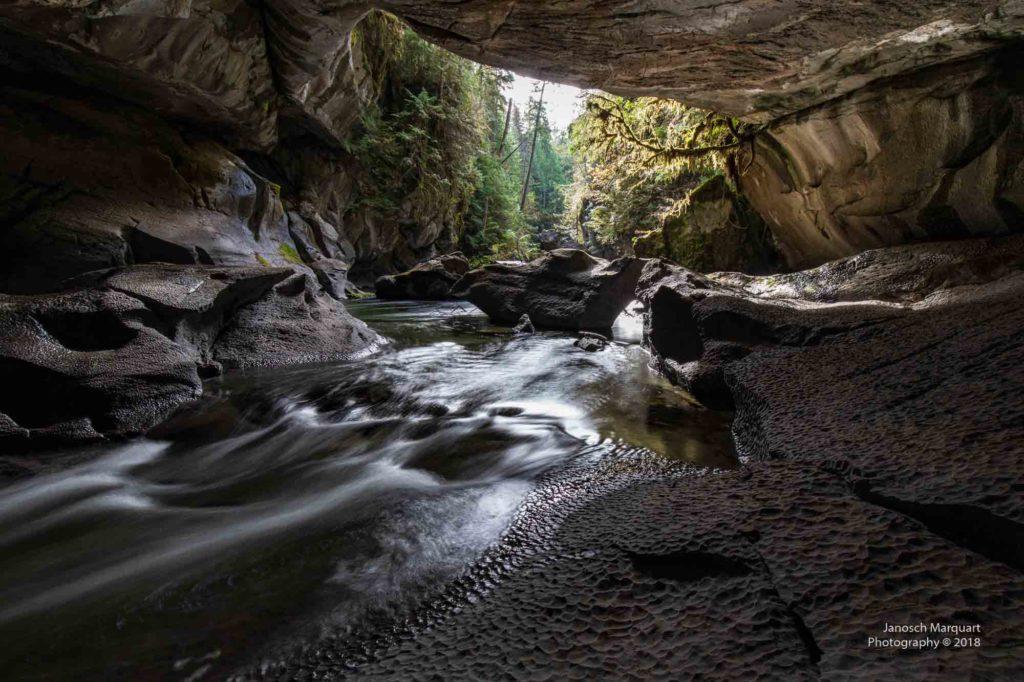 Blick hinaus aus einer Höhle im kanadischen Regenwald