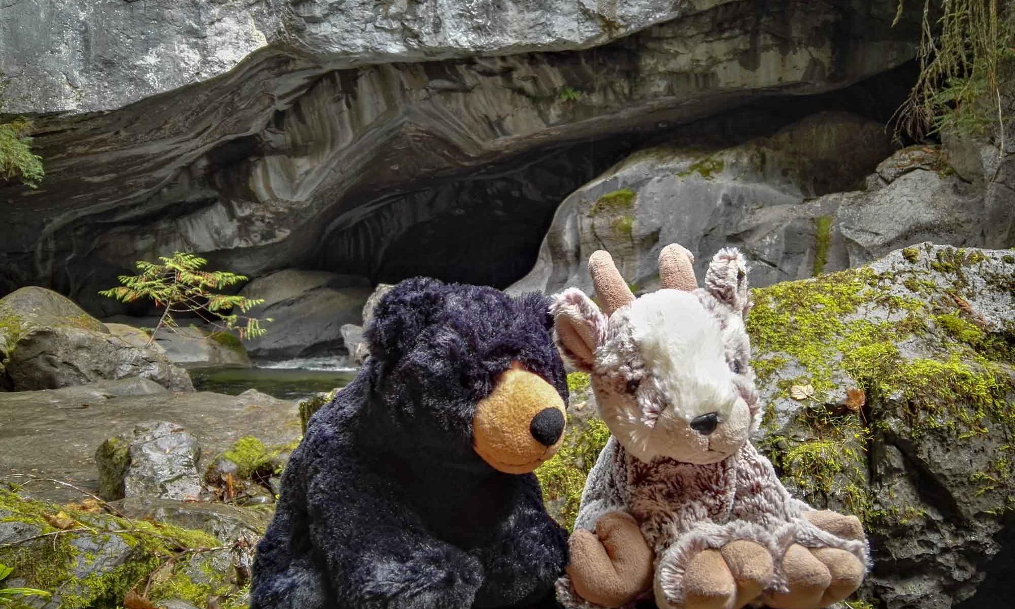 Balznerbock und Beary sitzen auf einem Stein vor der Höhle
