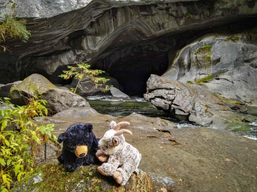 Balznerbock und Beary sitzen auf deinem Stein bei der Höhle