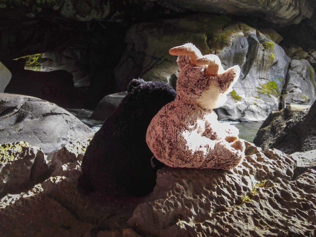 Balznerbock und Beary sitzen zusammen auf einem Stein in der Höhle