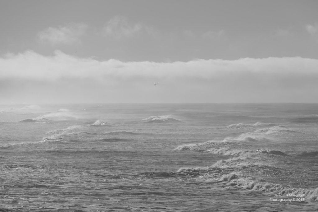 Wellen im Pazifik