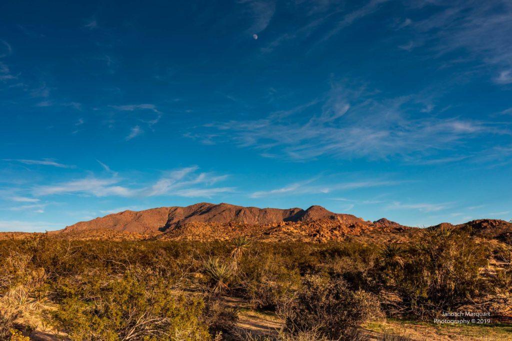 Colorado Wüste vor blaume Hintergrund.