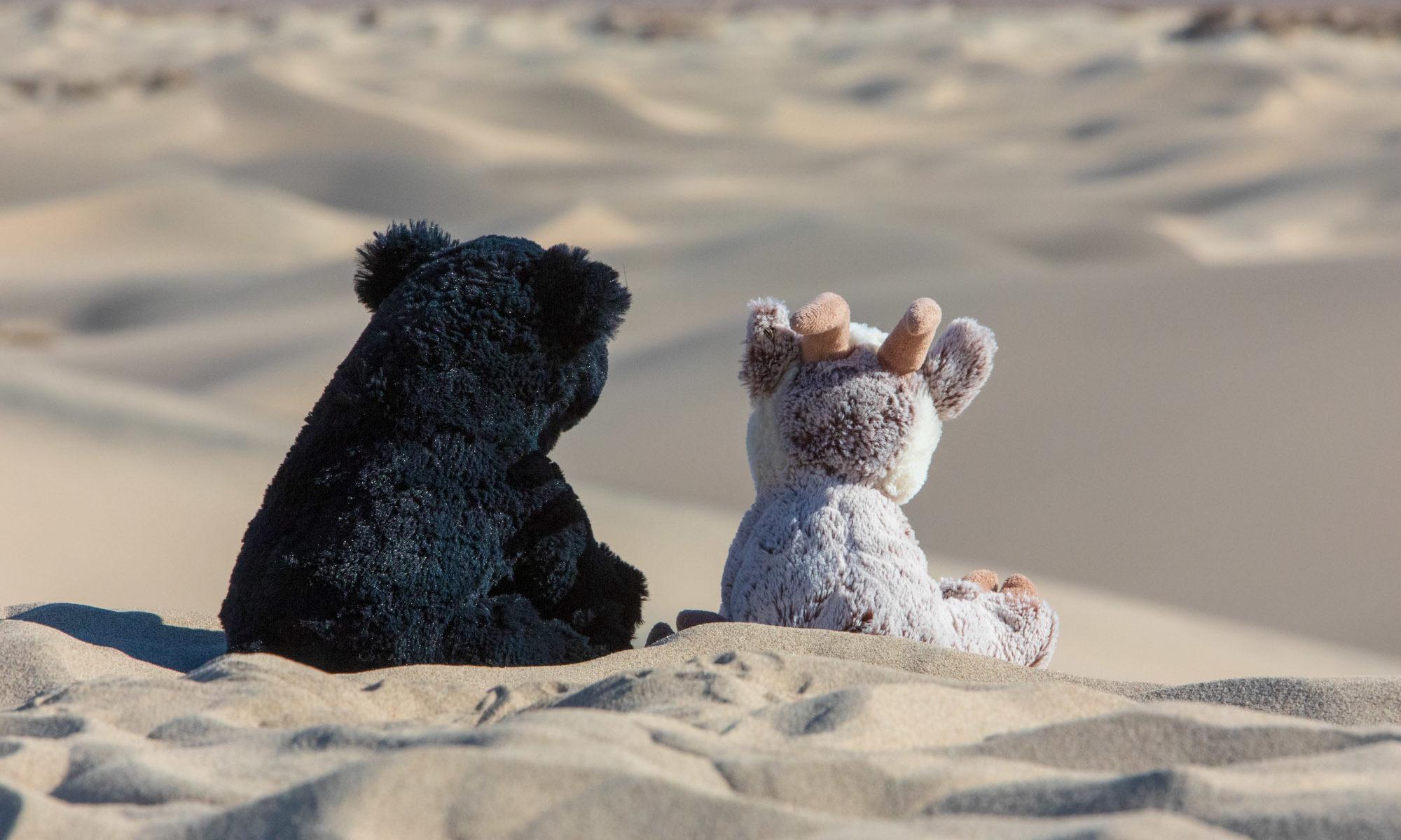 Balznerbock und Beary sitzen im Sand im Death Valley