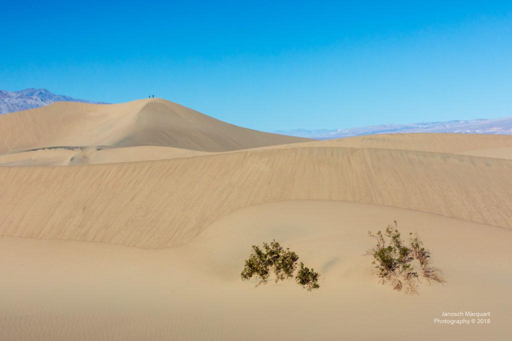 Sanddünenfeld im Death Valley