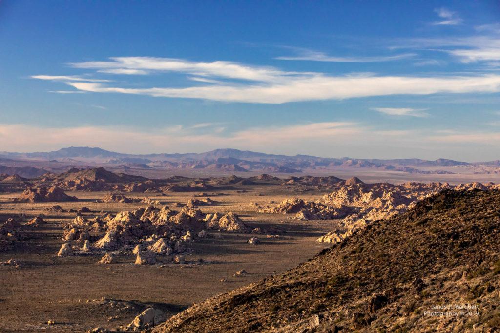 Ausblick auf die Wüste im Joshua Tree Nationalpark.