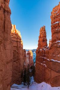 Mitten in den Hoodos im Bryce Canyon