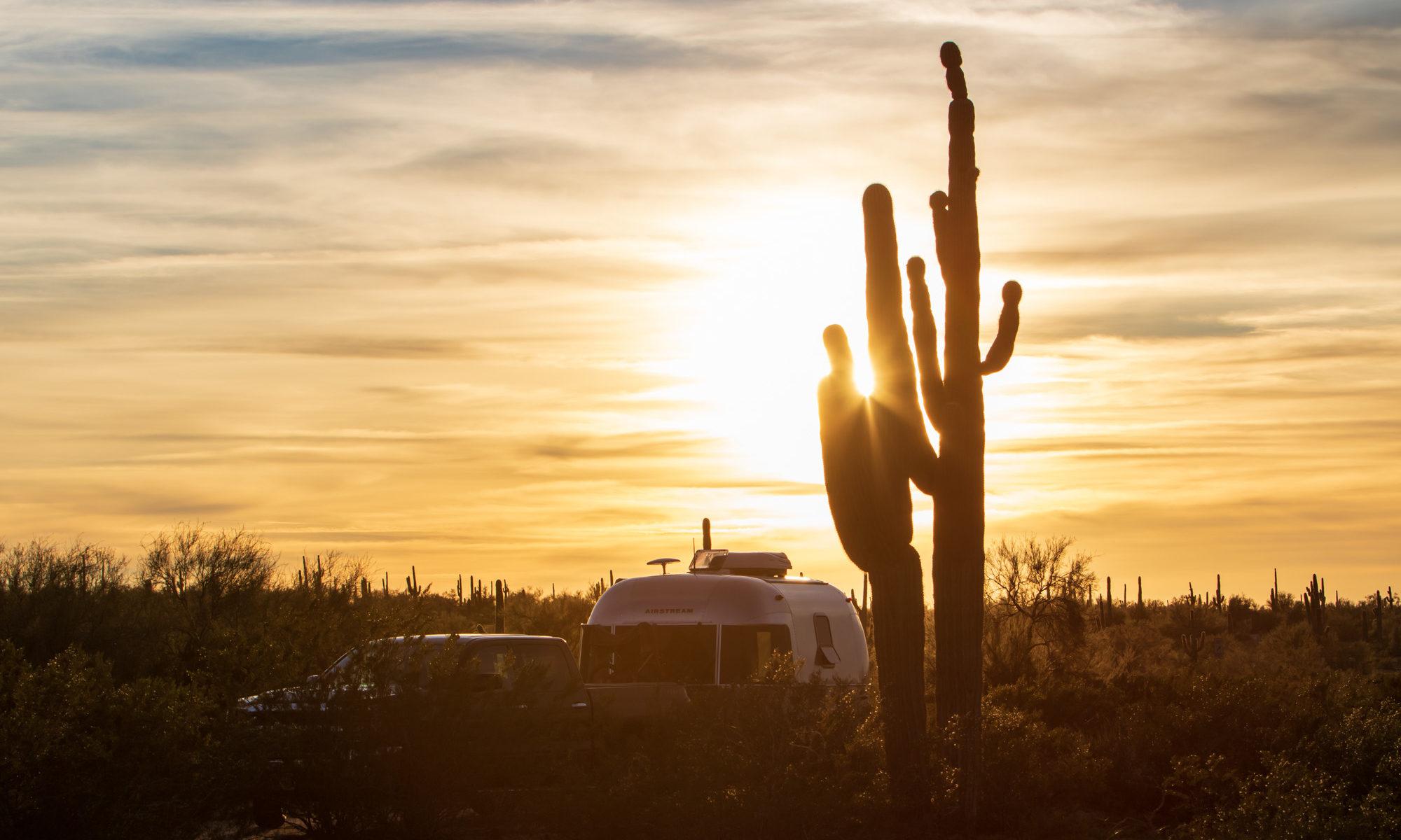 Sonnuntergang vor Saguara Kaktus.