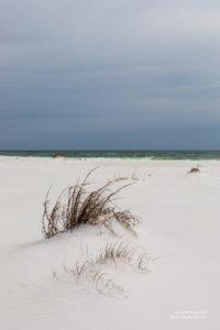 Weisser Sandstrand in Florida.