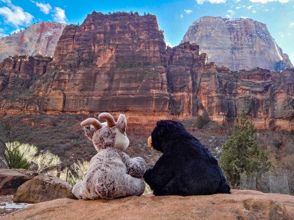 Balznerbock und Beary schauen sich die Farbigen Felsen im Zion Canyon an.