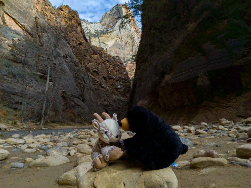 Balznerbock sitzen vor dem Fluss auf einem Stein und besprechen, ob sie ins Wasser gehen sollen.