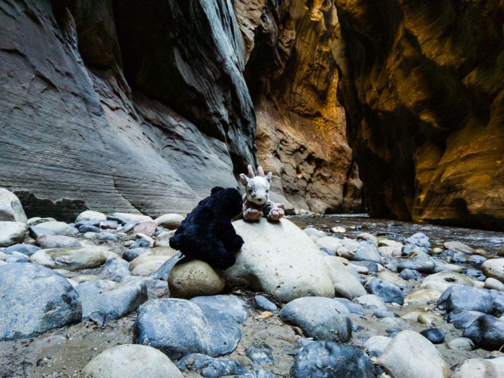 Balznerbock und Beary sitzen auf Steinen mitten im Canyon. Im Hintergrund sieht man die farbigen Felsen.